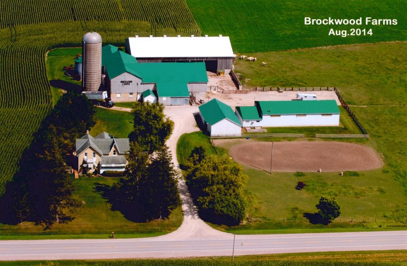 Brock, Tom - Farm