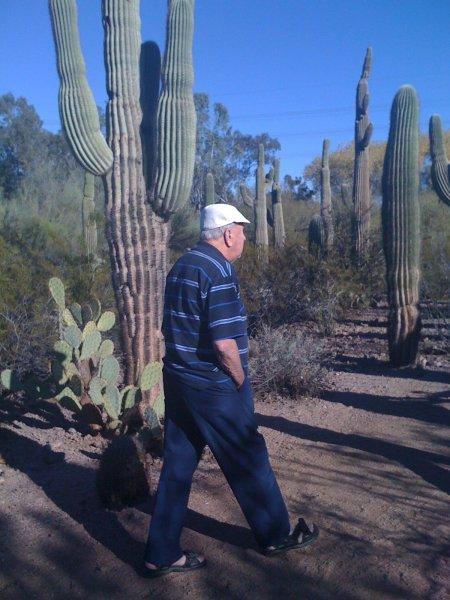Dad in Phoenix7 walking alone in the gardens