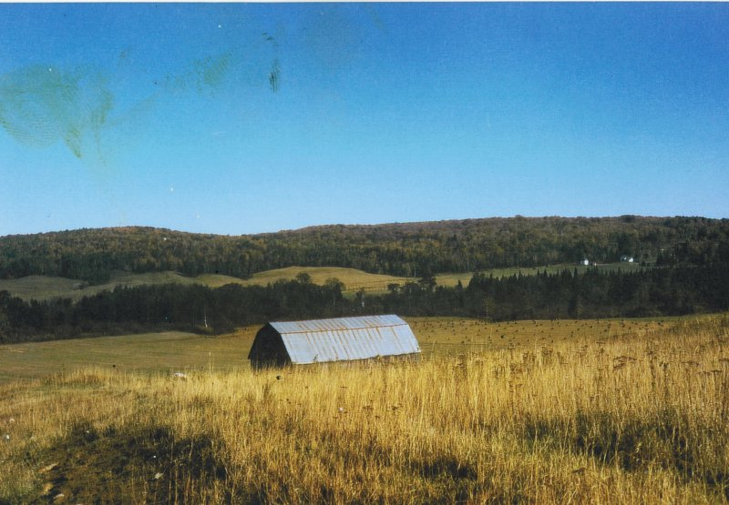 The barn in the field at cottage