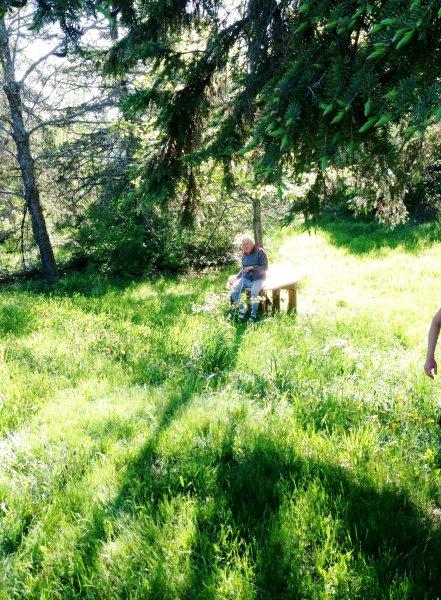 dad at sues tree (3)