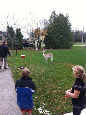 sami and jake with a deer nov 2012 006