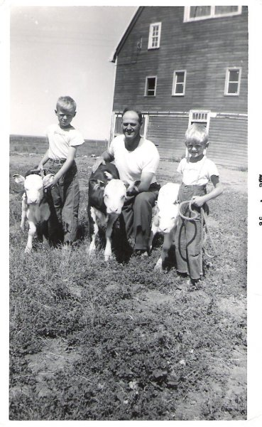 1956-twin-calves-one-3-weeks-older