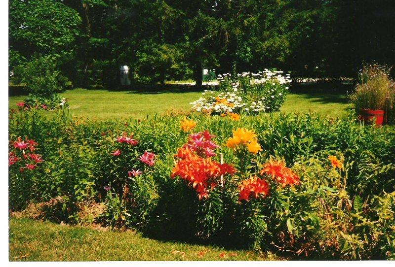 2000-summer-josies-garden
