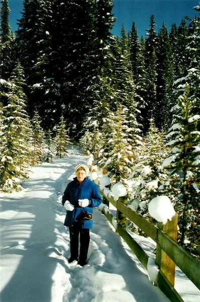 2001-01-07-nicholas-morants-curve-near-lake-louise
