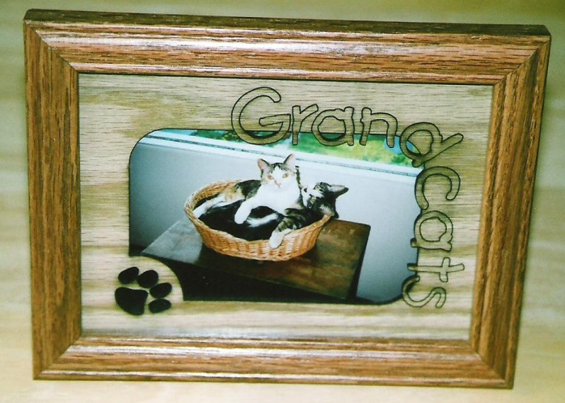 2001-summer-grandcats-cally-gracie