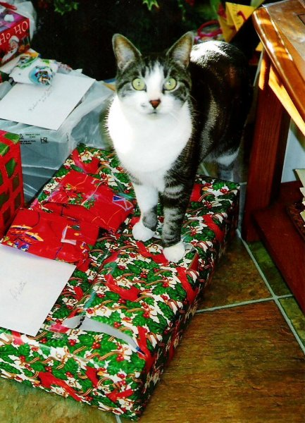 2006-12-25-gracie-with-presents