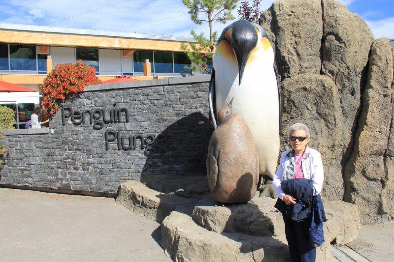 2013-09-22-1-penguin