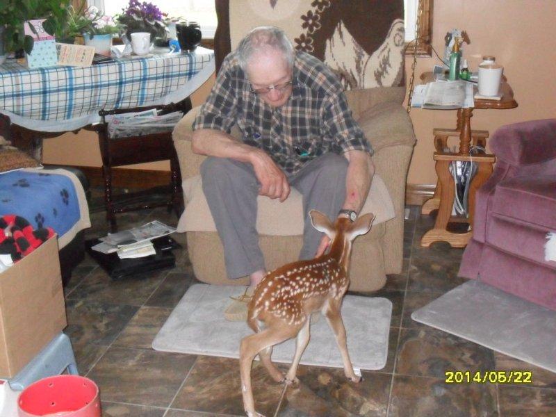 Deer day 2 012
